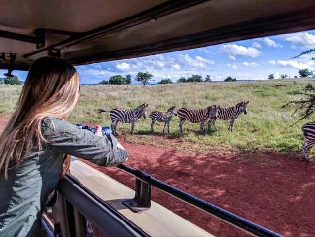 Safari at Akagera National park