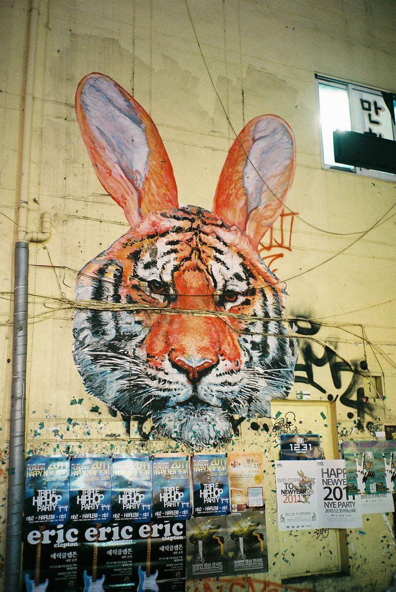 Hongdae tiger bunny