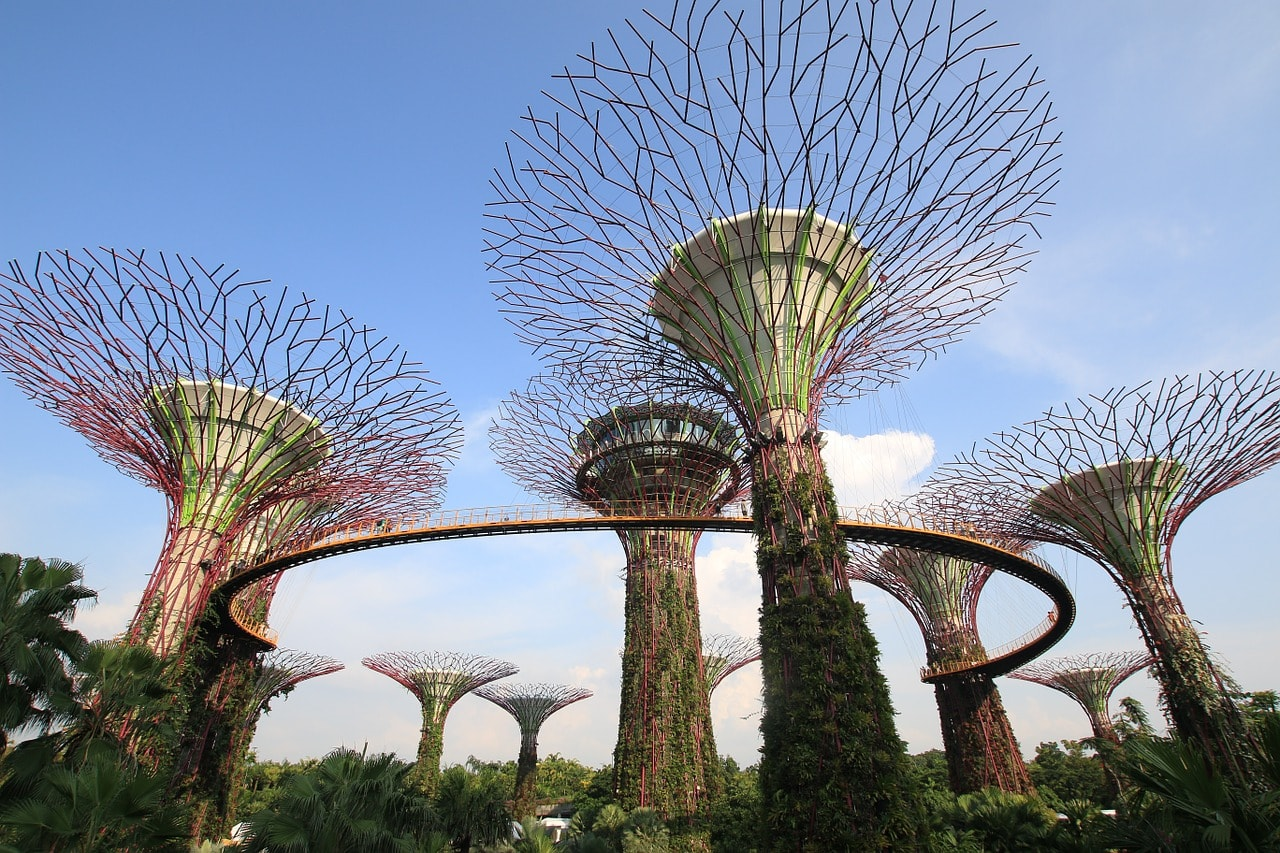 Gardens by the Bay Skyway