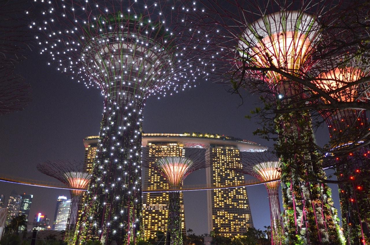 Supertrees at night