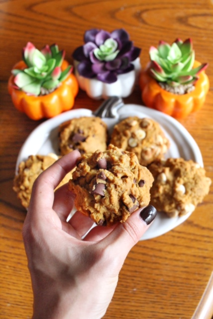 GF, DF, Amazing Pumpkin Chocolate Chip Cookies