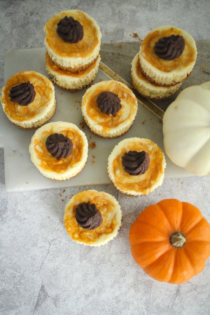 mini pumpkin swirl cheesecakes