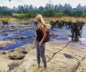 Visiting Pinnawala Elephant Orphanage