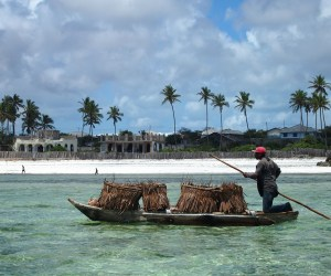 Top 5 beaches in Zanzibar