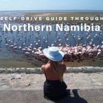 Self-drive Guide Through Northern Namibia