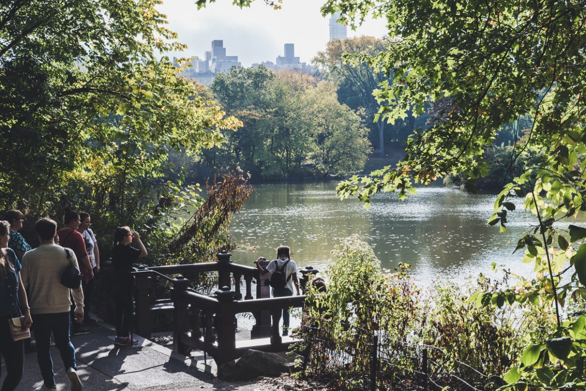 New York Guide - What to see