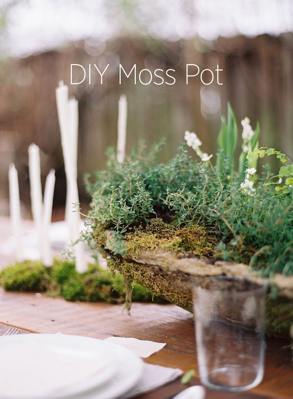 Using Potted Plants As Centerpieces