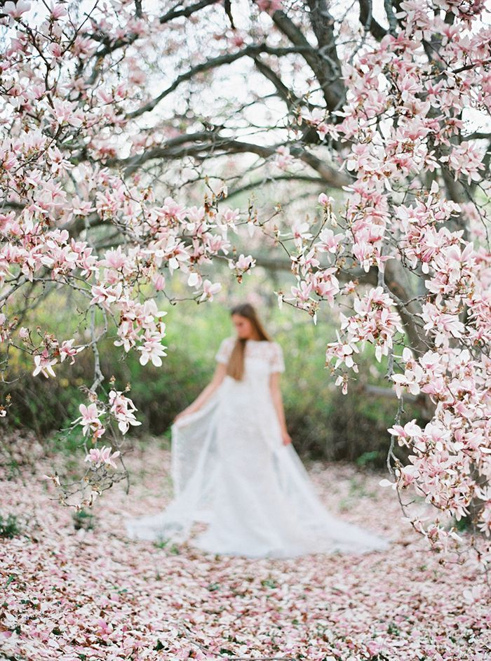 Dreamy Bridal Portraits Among The Magnolias Wedding