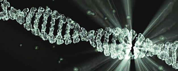 Análisis del ADN tumoral circulante para Cáncer de Mama: ¿futuro o realidad?