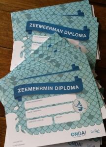 zeemeermin diploma