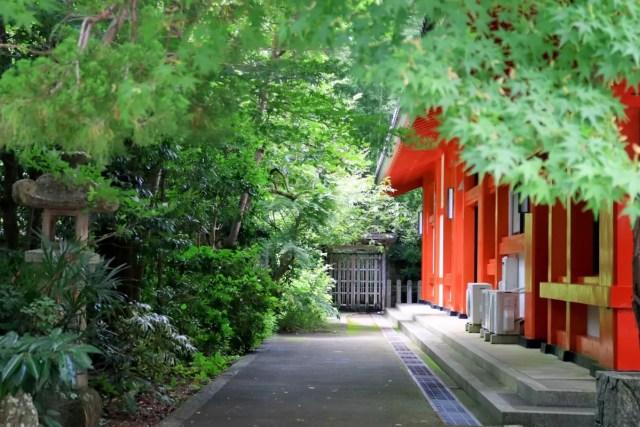 scorcio strada giapponese