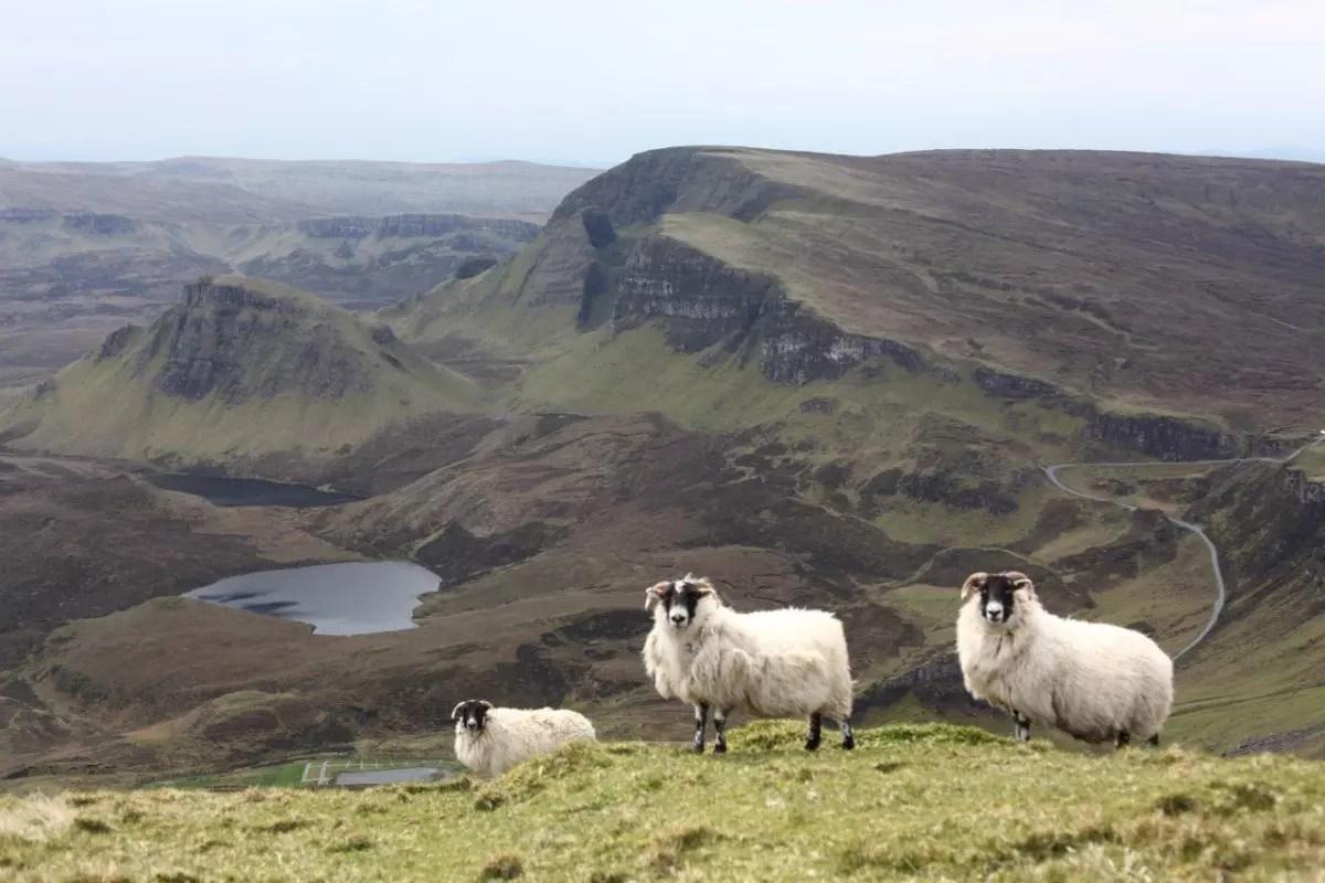 #1 | Noord Schotland 2014