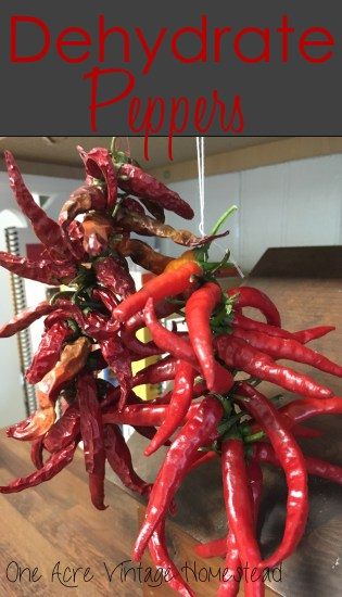 dehydrate peppers