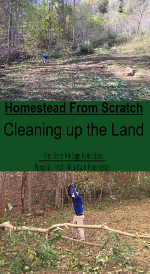 cleaning up the land