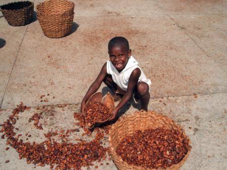 fair-trade-chocolate-gg-02
