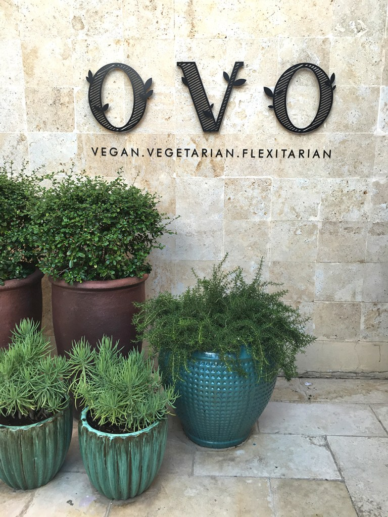 ovo-kuwait-vegan-restaurant-review
