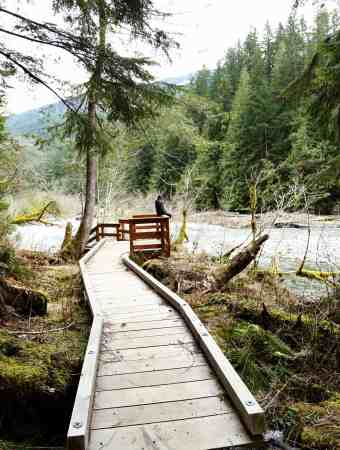 Getting Out in Nature with Kids – Nooksack Falls, Glacier WA