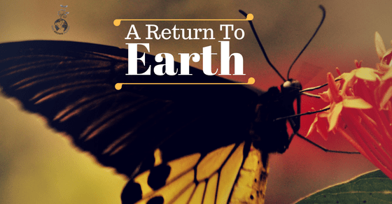 Butterfly, one brown planet, a return to earth