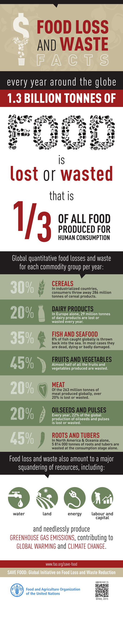 Food Waste Infographic FAO, One Brown Planet