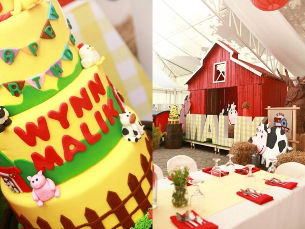 Farm Themed Birthday Party - 01