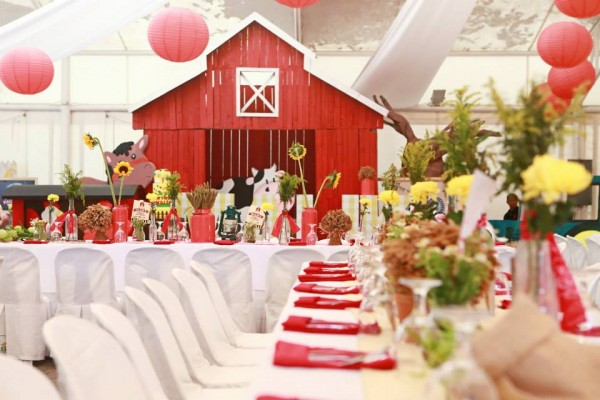 Farm Themed Birthday Party - 04