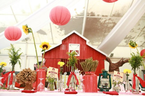 Farm Themed Birthday Party - 06