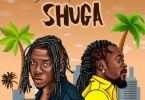 Stonebwoy ft Beenie Man - Shuga Acapella