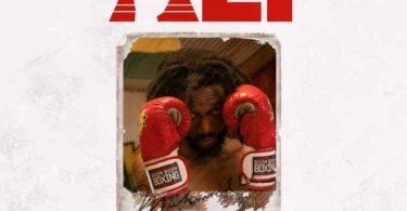 Kwaku DMC – Muhammad Ali