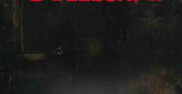 Thywill - Odeeeshi 2 ft Reggie x Jay Bahd x O'Kenneth
