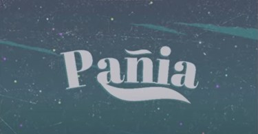 Shatta Wale - Panai