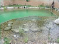 piscine-biologique-andernos-les-bains