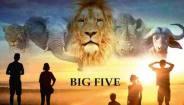 France-Télévisions-la-série-internationale-«Big-Five»-prochainement-à-l'antenne-de-France-3-min