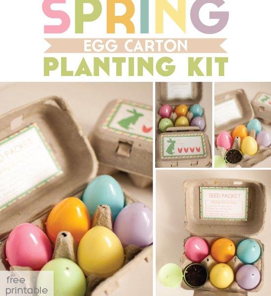 Spring Planting Kit (Egg Carton Printable)