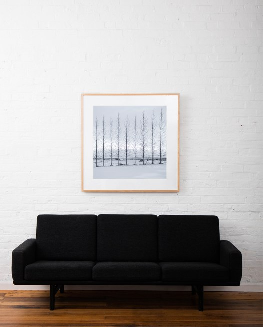 A square photographic art print of Icelandic landscape of snow and trees framed in raw timber on wall above sofa