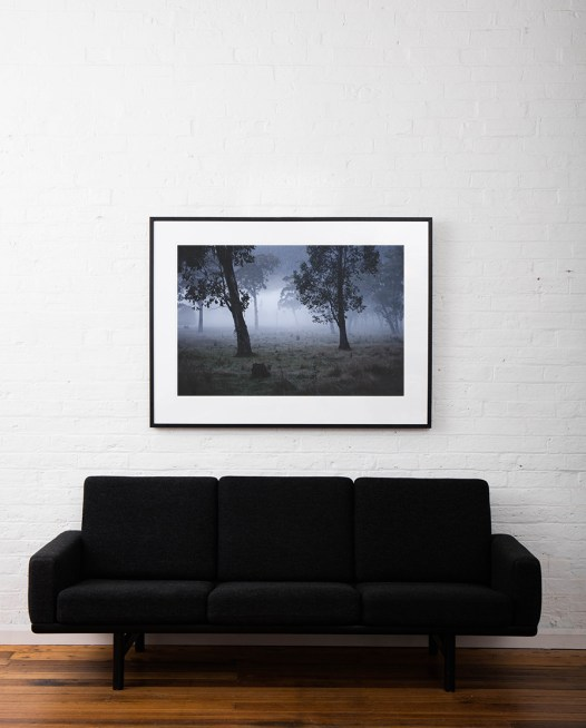 Australian Landscape photograh of trees in a misty/foggy day framed in black timber on white wall above sofa