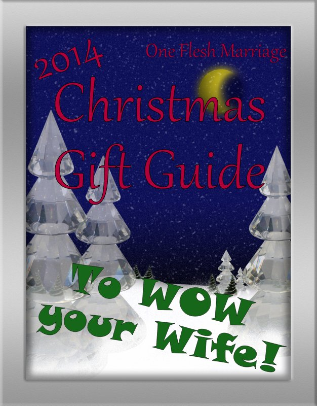 Christmas Gift Guide to Wow Your Wife – 2014 edition | One Flesh ...