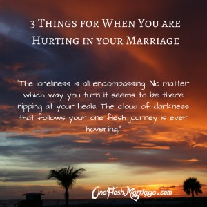3 Things for When you are Hurting in