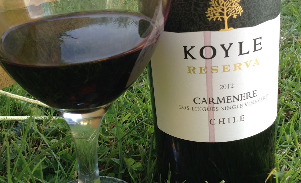 Carmenere and Chile wine review