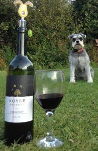 Koyle reserva carmenere wine review