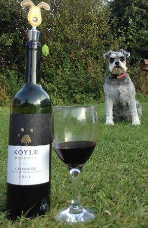 Viña Koyle Alto Colchagua Reserva Carmenère, 2012 wine review