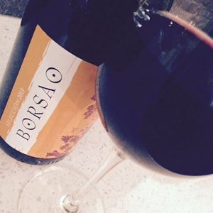 Borsao Seleccion Tinto wine review