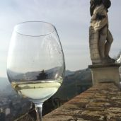 A glass of Asti at Castello Gancia Canelli