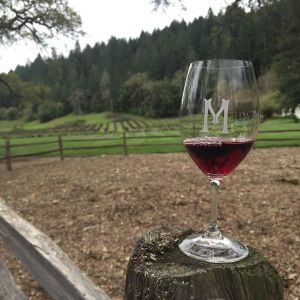 macmurray wines pinot noir 2