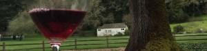 MacMurray Ranch wines