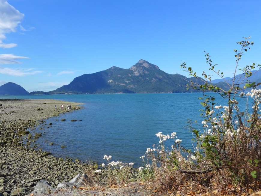 Make a quick stop at Porteau Cove Provincial Park on your way to Whistler