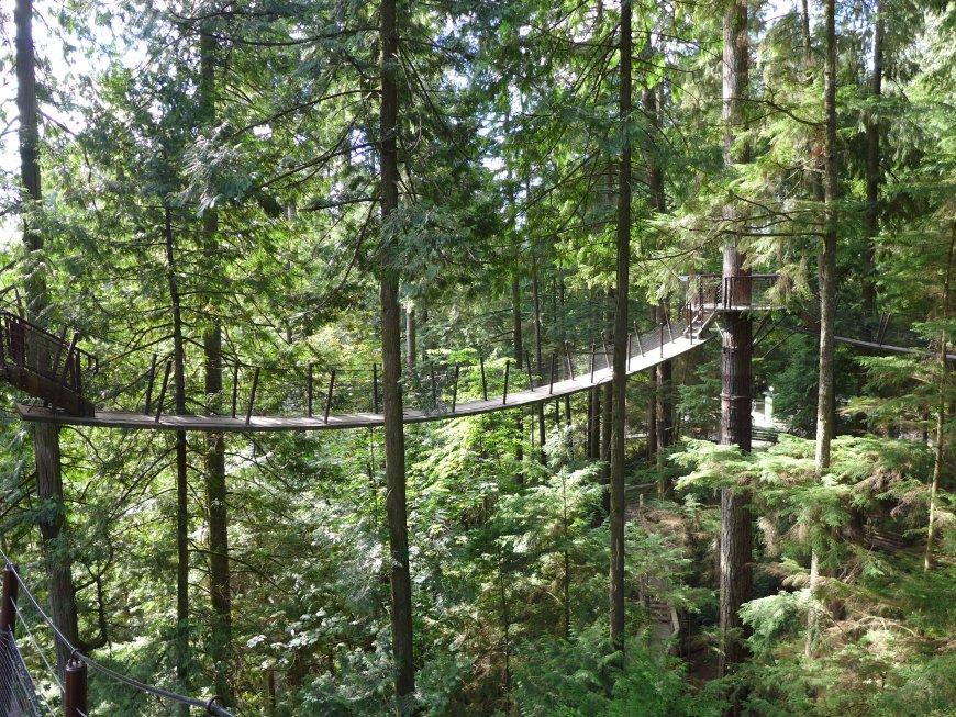 Vancouver in 2 days...Treetop Adventure at the Capilano Suspension Bridge Park!