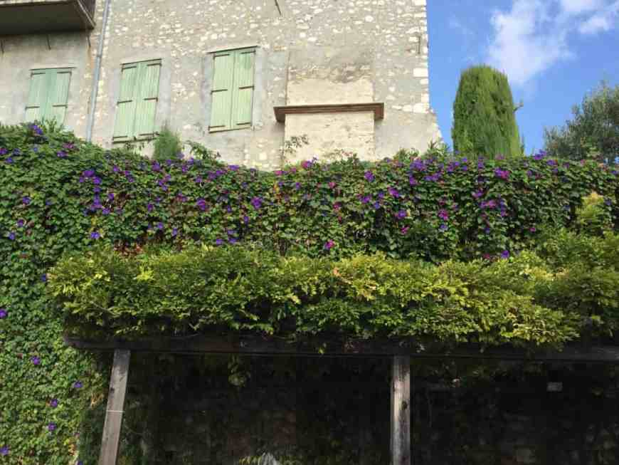 9 reasons you will fall in love with St. Paul de Vence