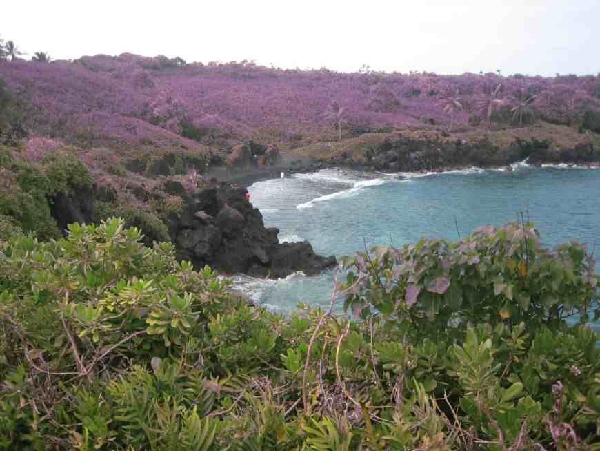 The black sand beach...tips for driving Maui's Road to Hana