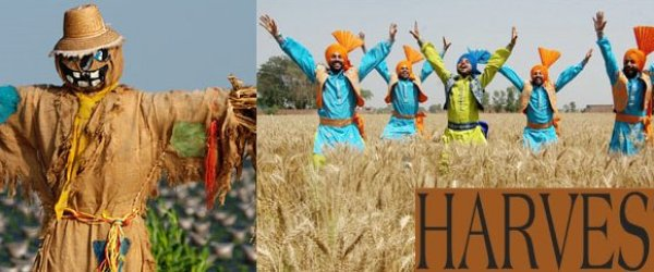 Harvest Festival around the world