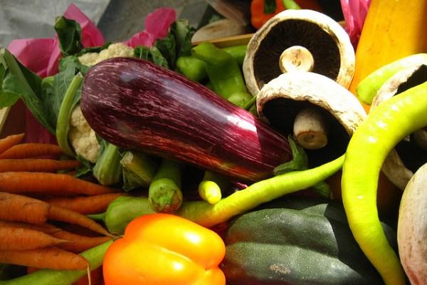 Vegan nutritionist top 5 green jobs careers